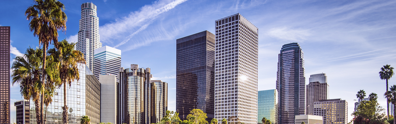 Syed Brokerage & Capital Los Angeles